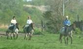 札幌周辺乗馬体験 ホースガーデンMURANAKA