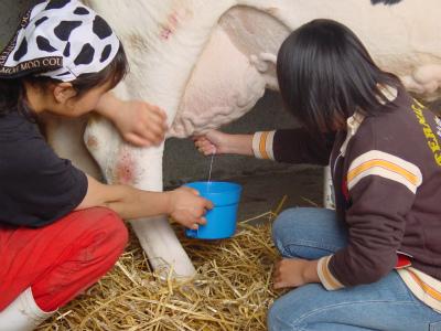 222fujita_farm_008 .jpg