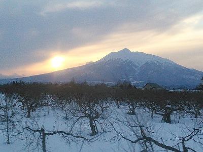 冬のりんご畑と岩木山の夕日