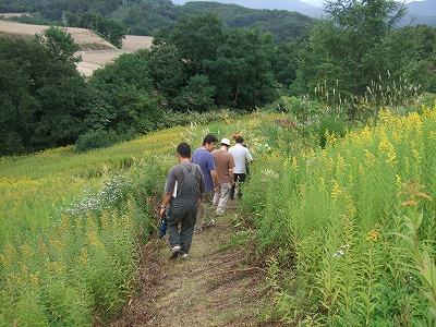 渡辺農場裏山ハイキング