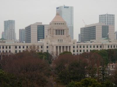 国交省会議室から国会議事堂
