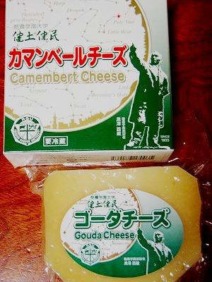 健土健民チーズ!