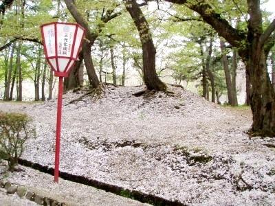 弘前公園桜の花びらの絨毯