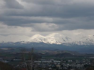 北西の丘から残雪の山々