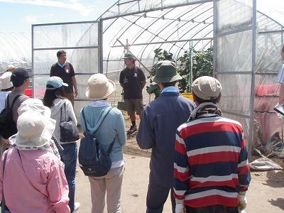 渡辺農場収穫体験2011