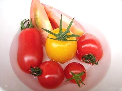 大塚ふぁーむ6種トマト