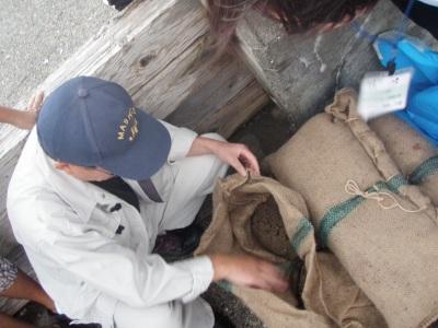藻場再生プロジェクト 施肥の説明