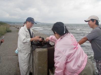 藻場再生プロジェクト 説明風景