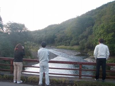 遊楽部川の鮭の遡上!