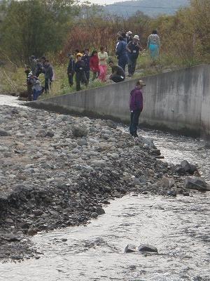 パンケ川の鮭の遡上見学