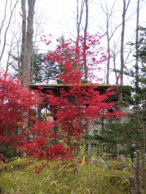 興楽園の日本庭園