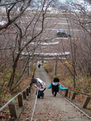 せたな太田山神社階段の上から