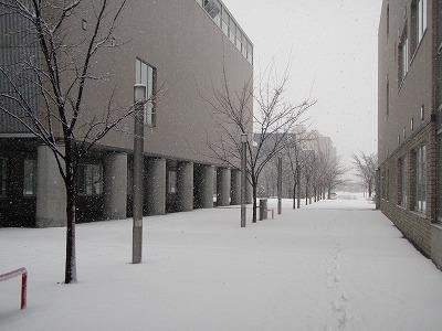 オフィスのある札幌市産業振興センター