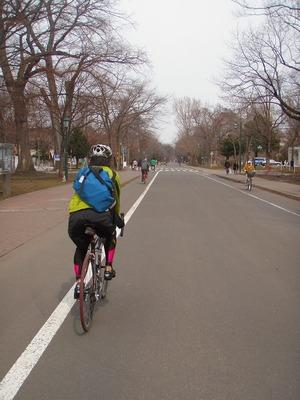 シティサイクリング北大キャンパス