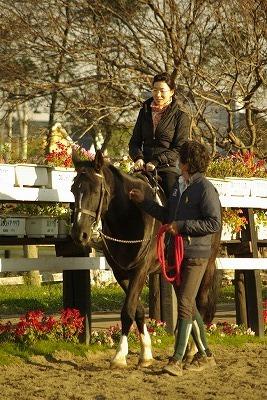 フロンテア乗馬クラブ引き馬体験李さん