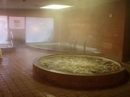北海道ホテル温泉内湯