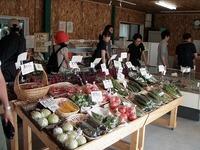 余湖農園直売所野菜