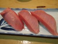 大寿しトロ握り寿司