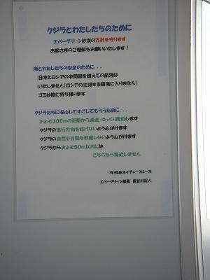 IMGP2409.jpg