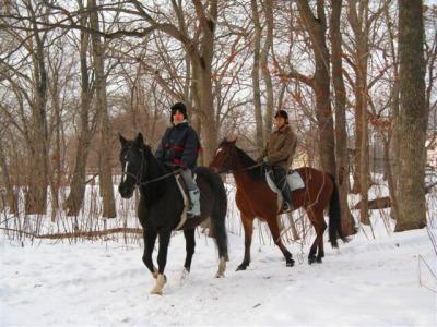 札幌周辺 冬の乗馬体験