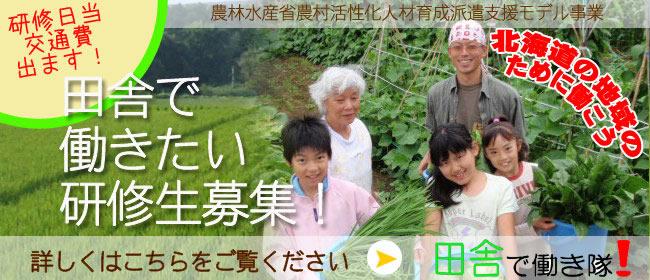 banner_hatarakitai.jpg
