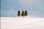 石狩 雪原をホーストレッキング
