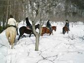 ワイルドムスタングス 雪中乗馬