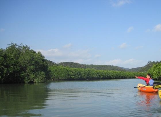 manguro-bu.jpg
