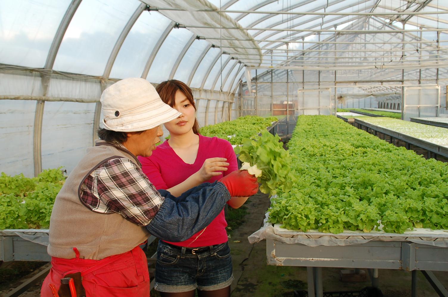 余湖農園2