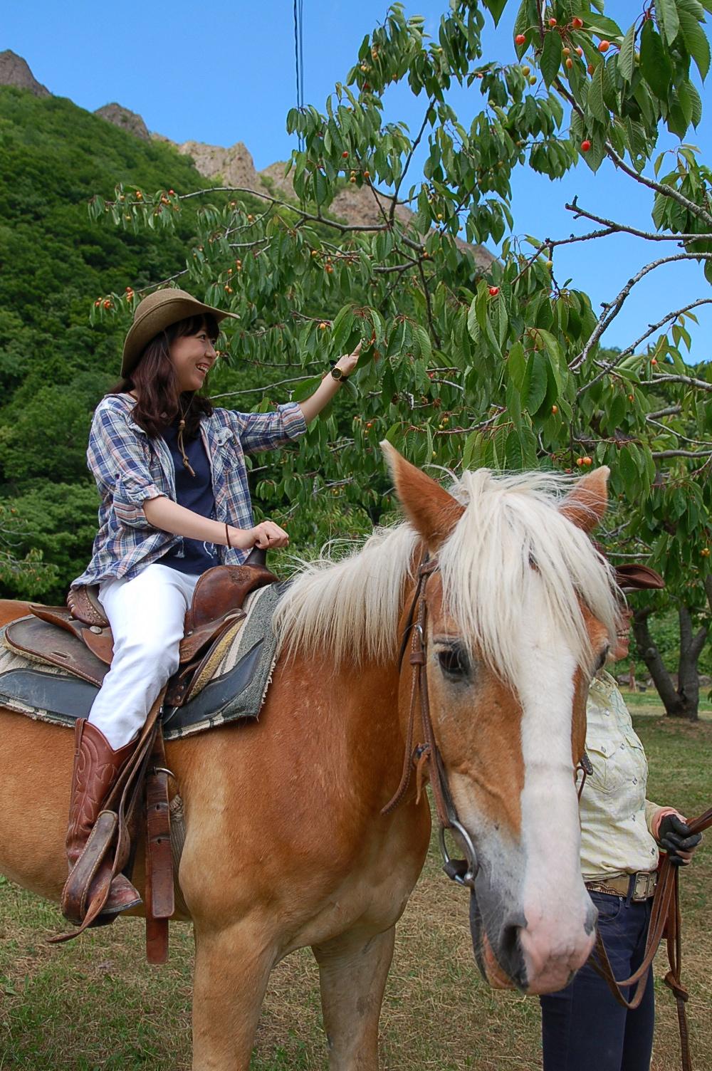 ワイルドムスタングス,八剣山果樹園,乗馬,果物狩り