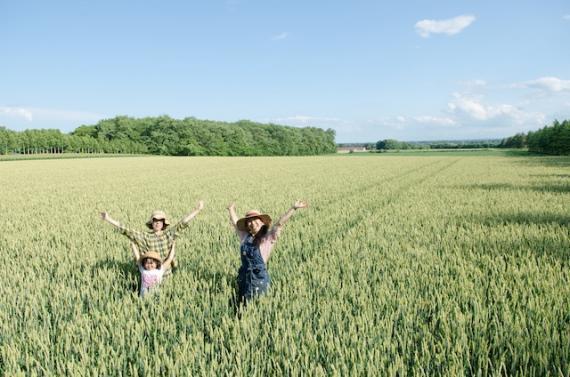 十勝,小麦畑,ピクニック,いただきますカンパニー