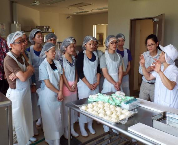 酪農,八雲,乳製品製造体験