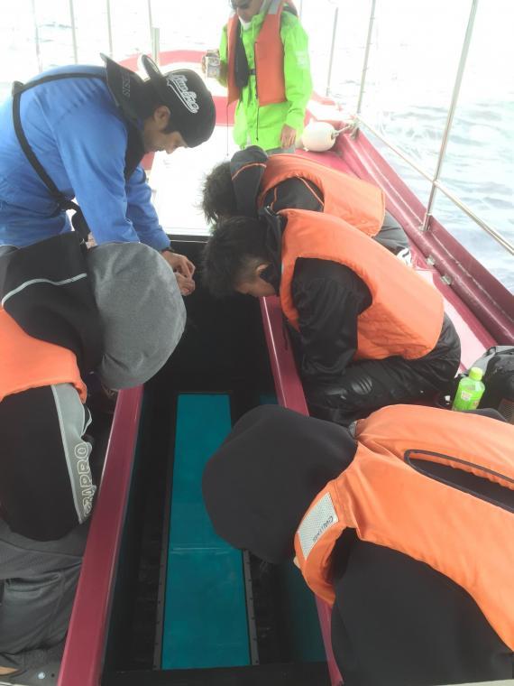 小樽,青の洞窟,グラスボート,合同会社アクア