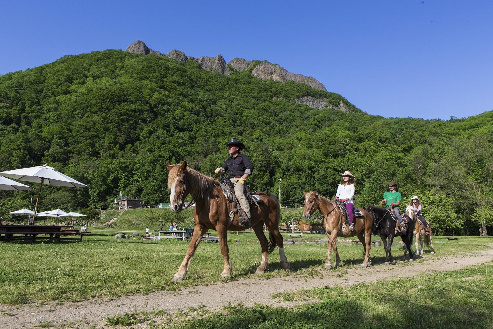 ワイルドムスタングス,乗馬体験